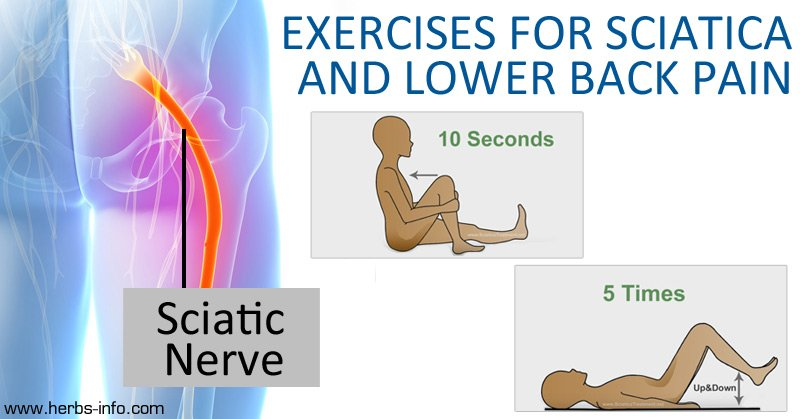 6 Of The Best Exercises For Sciatica And Lower Back Pain ...