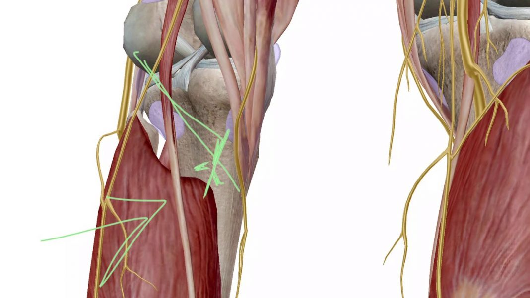 knee pain behind the knee that wont go away youtube