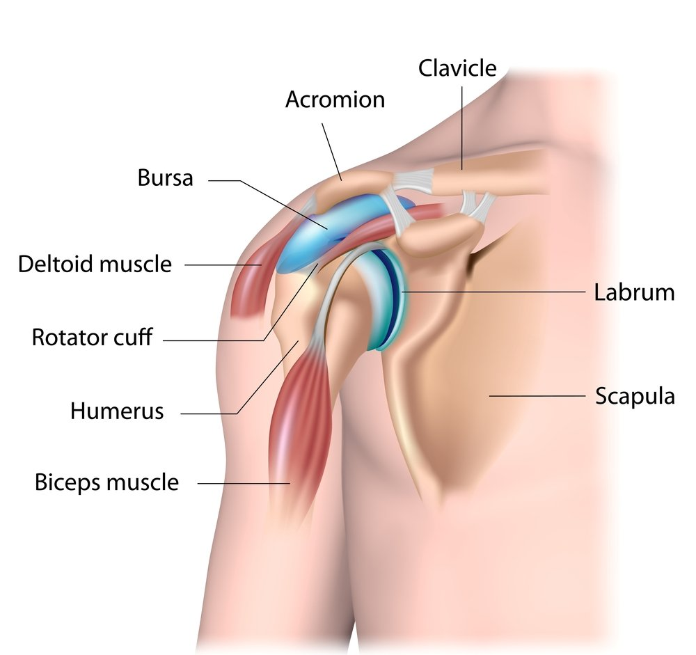 Prolotherapy for Rotator Cuff Injury